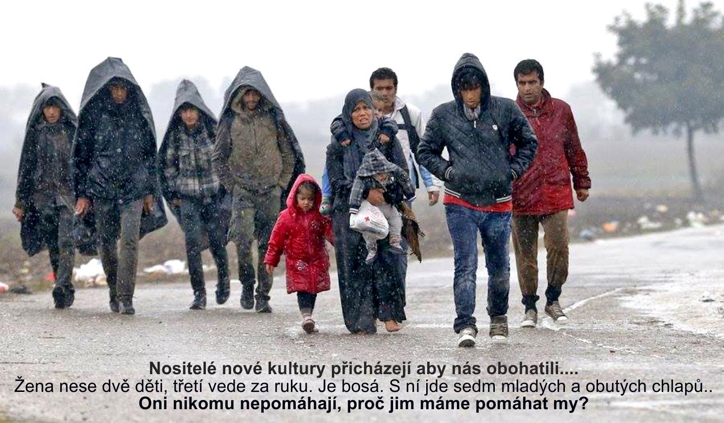 imigranti-ms